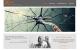 xnome_website